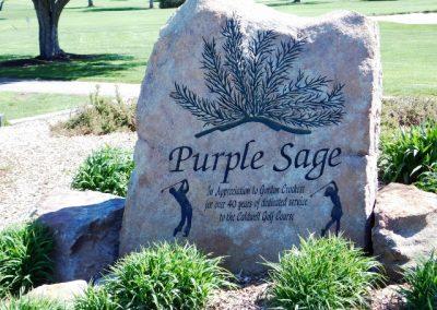 purple sage 071 (640x480)