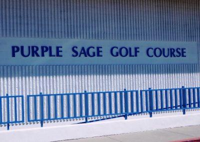 purple sage 081 (640x480)